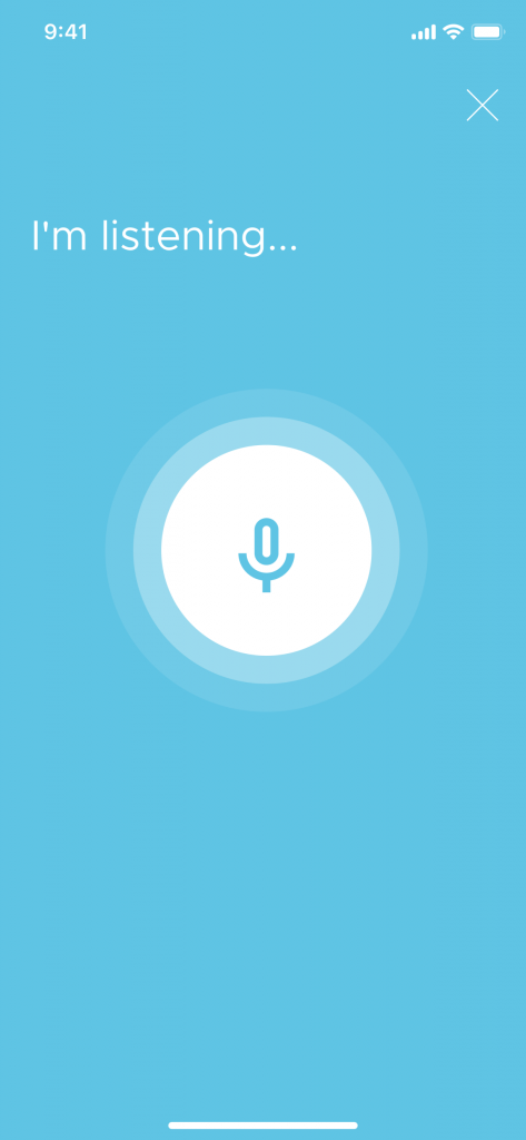 voice chatbot interface
